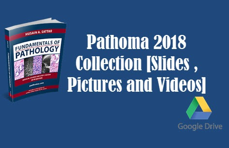 Pathoma 2018 Collection [Slides , Pictures and Videos